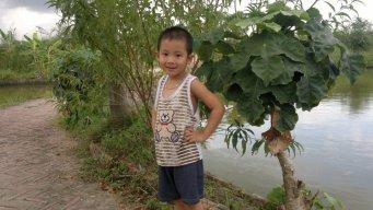 huan nguyet